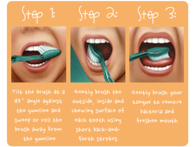 How to Brush your Teeth – House of Dentistree